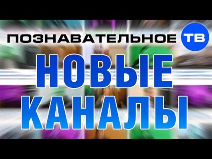Иллюстрация на тему Познавательные каналы на Ютубе: образование и наука